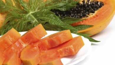 Photo of Can papaya leaves help cure dengue?