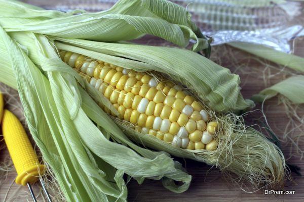 Fresh corn cob half open in his leaves and cornsilk
