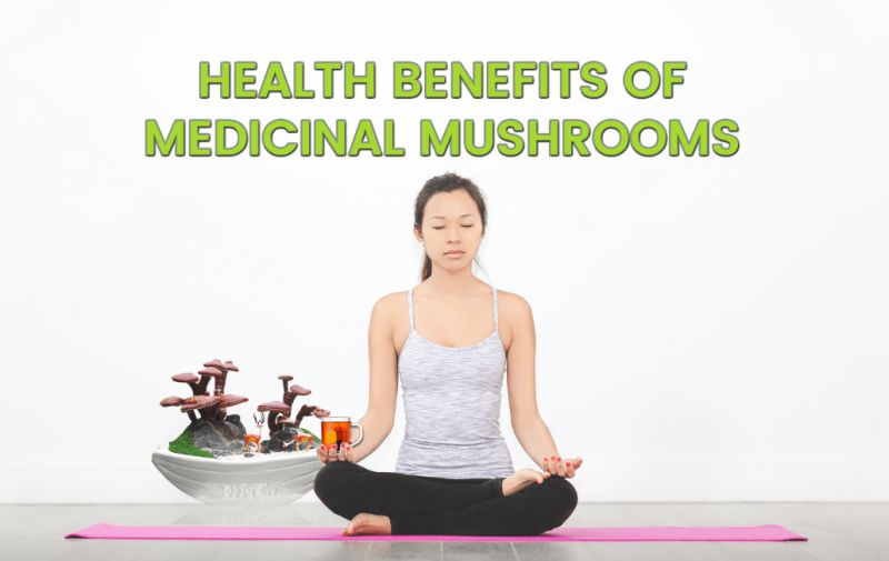 Photo of Health benefits of medicinal mushrooms